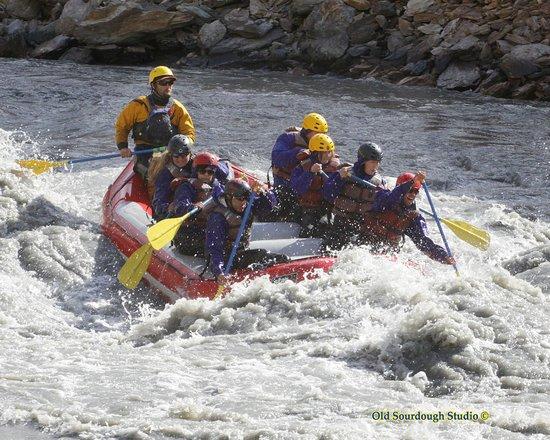 Denali Outdoor Center: Entering the rapids.