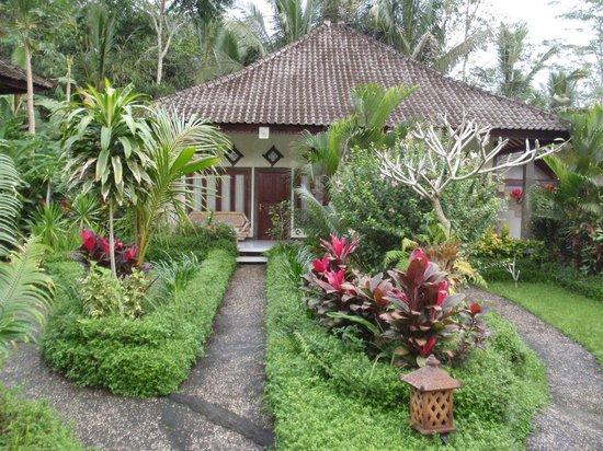 Great Mountain Views Villa Resort: Path to villa
