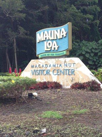 Mauna Loa : YUM