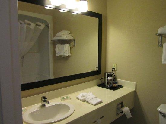 Country Inn & Suites By Carlson, Oakville, ON : Baño