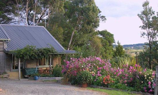 Nelson Coastal Barnstay: Flower garden outside the Barn