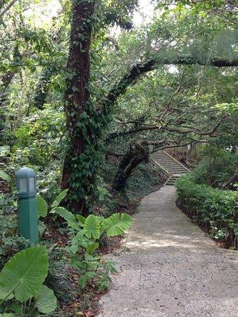Ryutan Site: August 2013