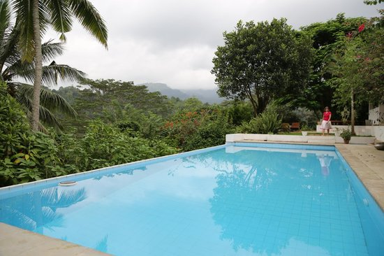 Ellerton Bungalow: poolside with mountain views