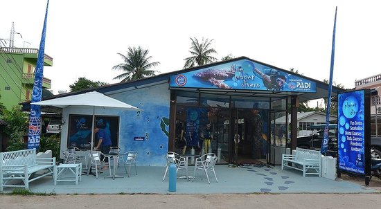 Blue Planet Divers: Blue Planet office located in saladan