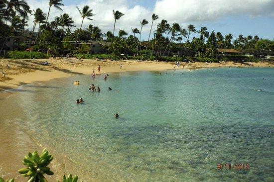 Napili Sunset Beachfront Resort : Napili Beach on a nice day
