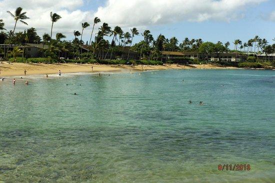 Napili Sunset Beachfront Resort : More Napili Beach photo