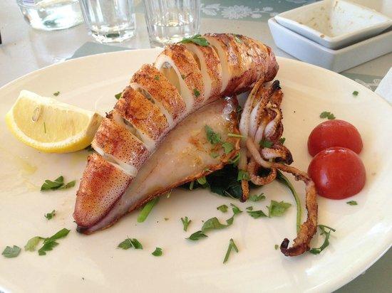 Siparos: Calamar grillé