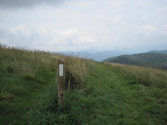 Max Patch: The Appalachian Trail