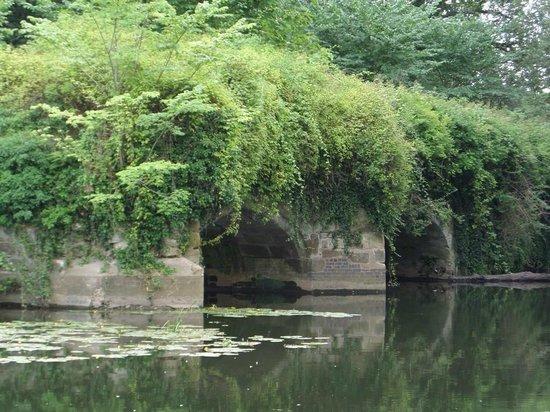 The Mill Garden: Overgrown Piers of a demolished bridge