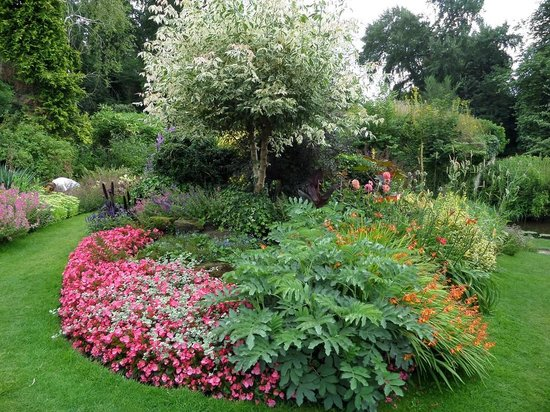The Mill Garden: Beautiful flowers to greet you