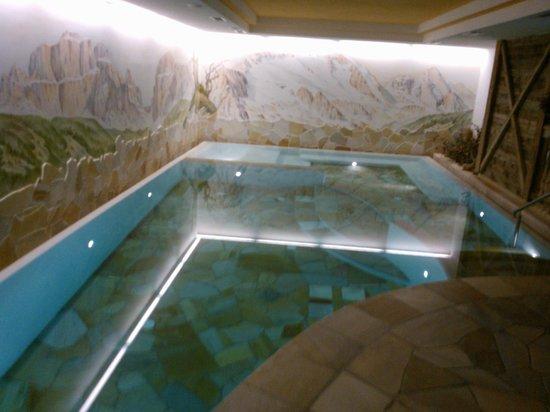 Wellness Hotel Lupo Bianco : piscina centro benessere