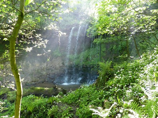East Lothian, UK: Magical Bilsdean Waterfall