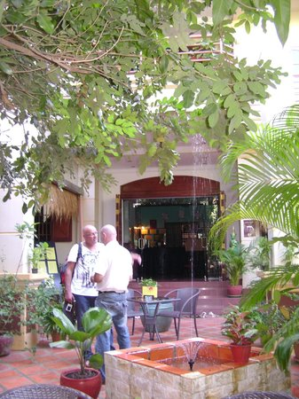 Alibi Guesthouse: la guesthouse et son jardin
