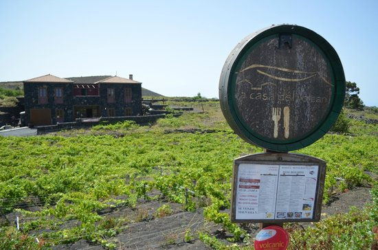 Malvasia druiven foto van la casa del volcan fuencaliente de la palma tripadvisor - La casa del volcan ...