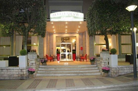 Hotel Mediterraneo: ingresso