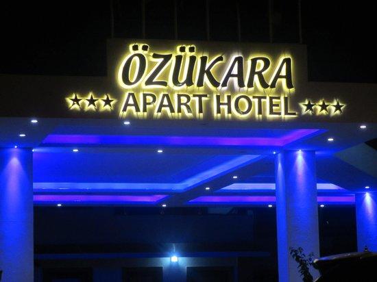 Ozukara Apartments: Main Reception