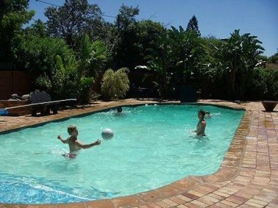 Island Vibe Port Elizabeth : Swimming pool