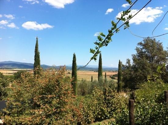 Fattoria Poggialberi: Vista dal giardino