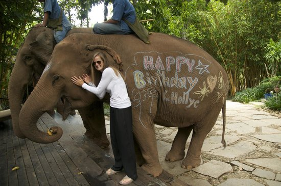 Four Seasons Tented Camp Golden Triangle: Birthday Surprise
