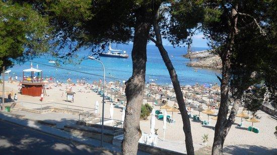Beach Club Font de Sa Cala: Sa Font de Sa Cala