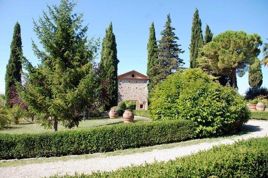 Azienda Agricola Cercignano: La Chiesetta di Cercignano, Colle di Val D'Elsa (SI)