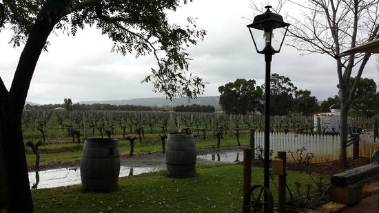 Out & About Wine Tours: Windy Creek Estate winery