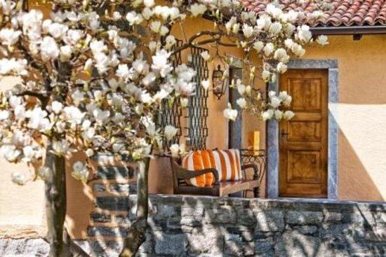 La Casetta : Magnolien