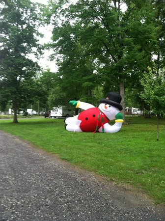 Country Acres Campground: Snowey lounging in the park - part of Christmas in July