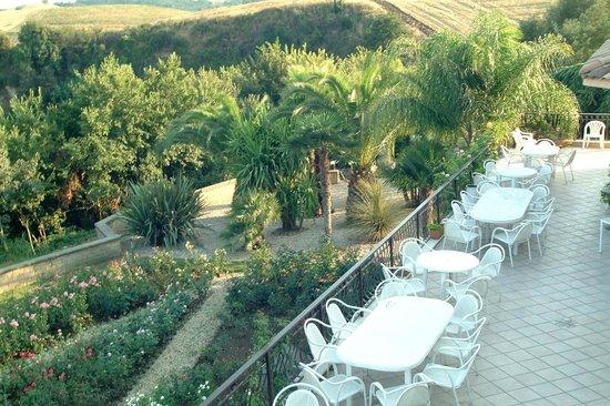 Birdland B&B: terrazza e palmeto