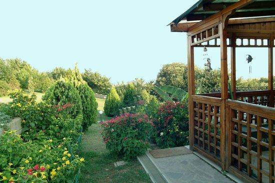 Birdland B&B: veranda
