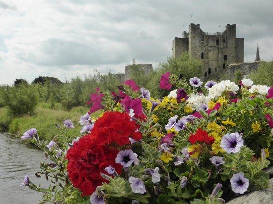Castle Arch Hotel: Castle am River Boyne