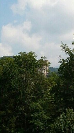 Black Bear Inn & Suites: View of hillside from our balcony (using a zoom).