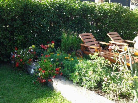 Hotel Laurino: giardino