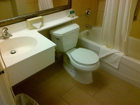 Holiday Inn Express & Suites Toronto Airport West: OK bathroom