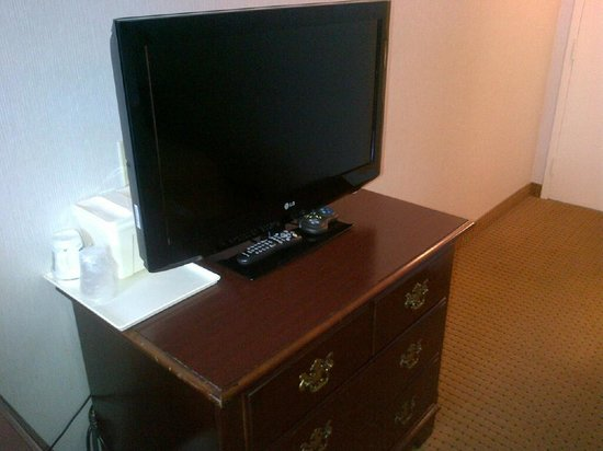 Holiday Inn Express & Suites Toronto Airport West: Newer TV