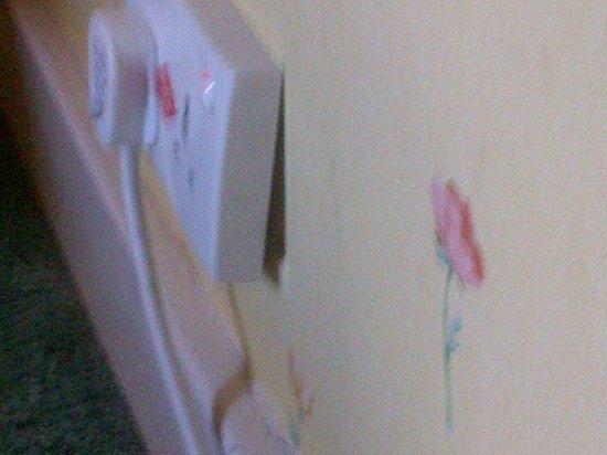 Dunnikier House Hotel: Loose plug socket