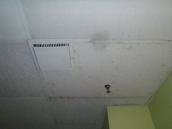 Bala Bay Inn: black mould and dirty ceiling tiles