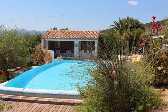 Aloasis : la piscine