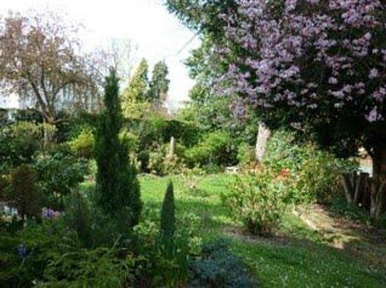 Sycamore House : Front garden
