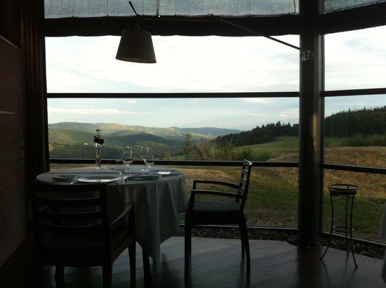 Hôtel Régis et Jacques Marcon : View from dining room