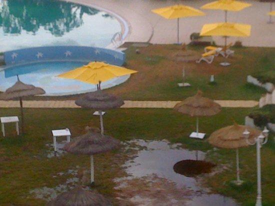 Prima Life Imperial Park : le gazon 2 aprés une chute de pluie