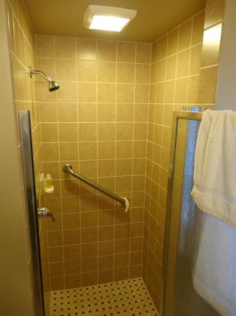 Americas Best Value Inn: shower nicely tiled