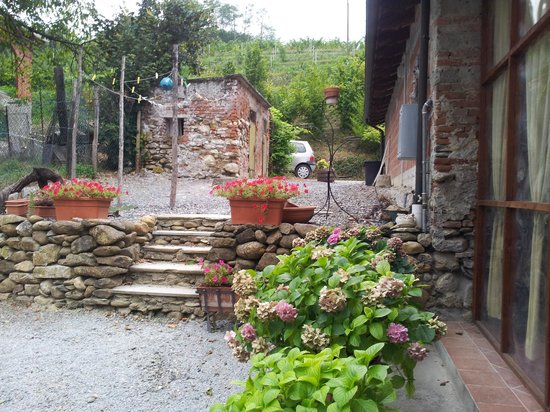 Agriturismo Cascina Tollu : In back of the house