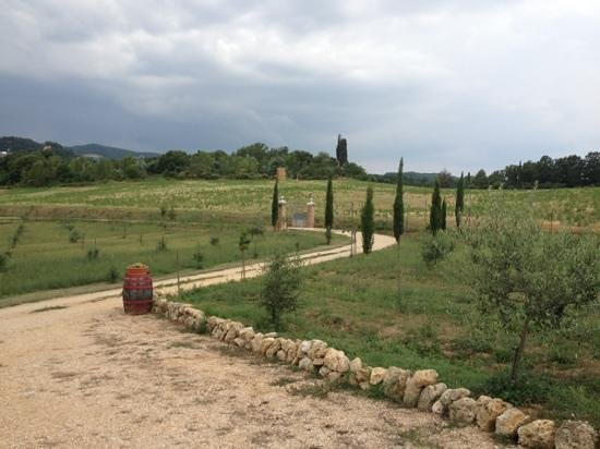 The surrounding fields at Agriturismo Fonteleccino
