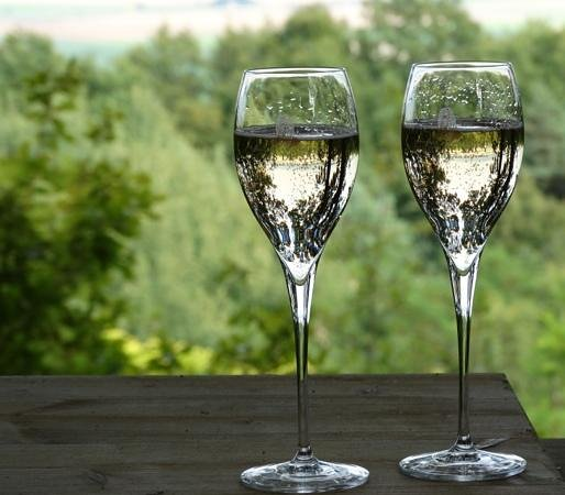 Perching bar: champagne for two
