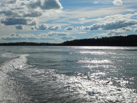 Downeast Charter Boat Tours : A gorgeous day on the Bay of Fundy.