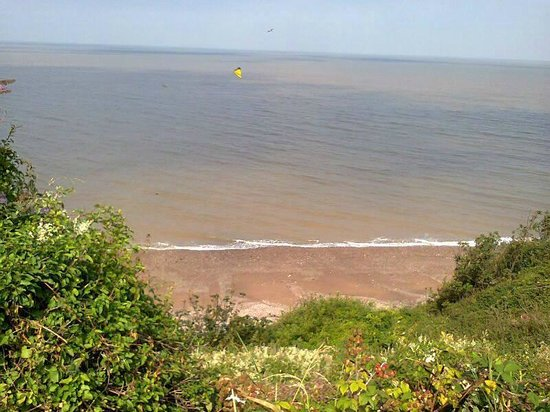 St Audries Bay Holiday Club : view from our van