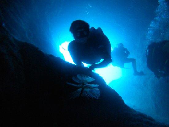 """Argonauta Diving Club : divers at """"la Galleria"""""""