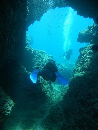 Argonauta Diving Club : Diving at