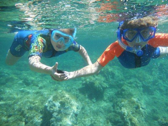 Argonauta Diving Club : Snorkeling for families